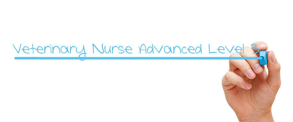 Advanced Veterinary Nursing